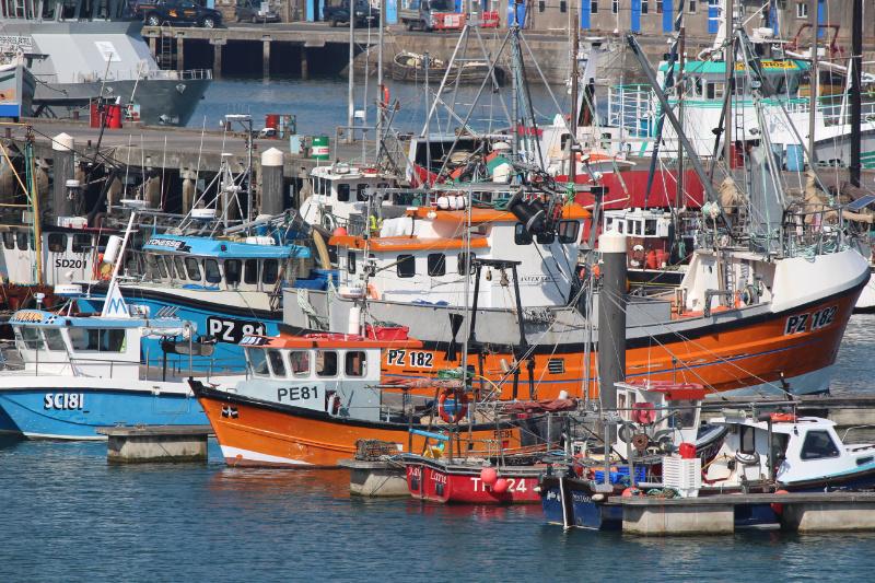 Fishing Boats 800x533